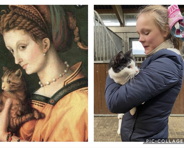 8-JE-Francesco-Bacchiacca-Portrait-of-a-young-lady-holding-a-cat